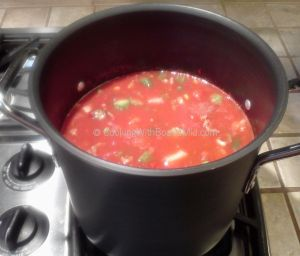 Stock Pot of Veg Soup - CBM c