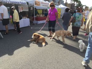 Dogs at Market - CBM